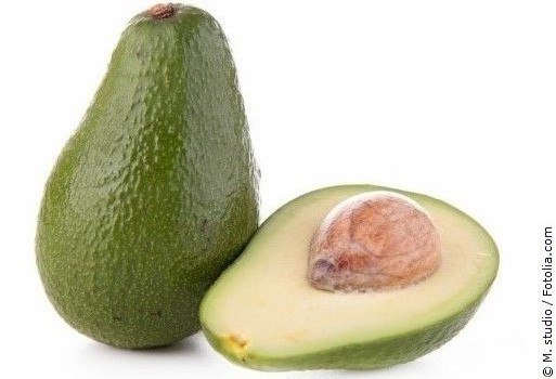 avocado persea americana botanik herkunft pflege. Black Bedroom Furniture Sets. Home Design Ideas