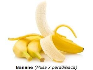 Banane auf weißen Hintergrund