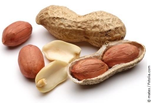 Erdnuss mit weißem Hintergrund