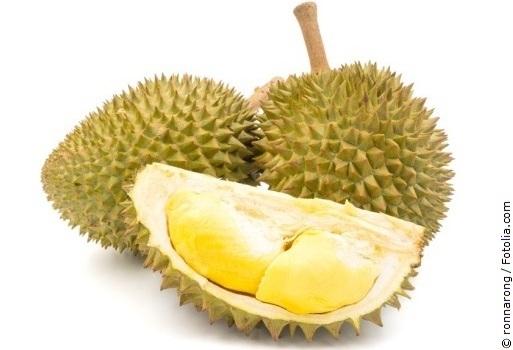 Durian mit weißem Hintergrund