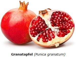 Granatapfel mit weißem Hintergrund