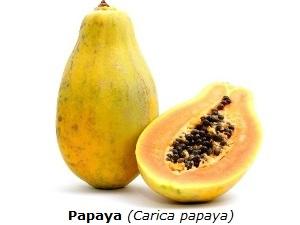 Papaya mit weißem Hintergrund